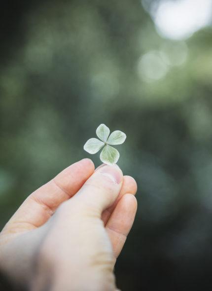 Woman holding a four-leaf clover